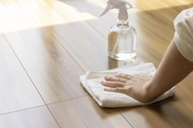 カビや変色はどうする?賃貸物件にあるフローリングの掃除方法をご紹介!の画像