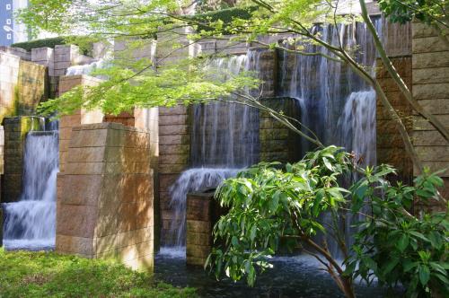 北品川にある都会のオアシス!紅葉や桜が美しい御殿山庭園の魅力とはの画像