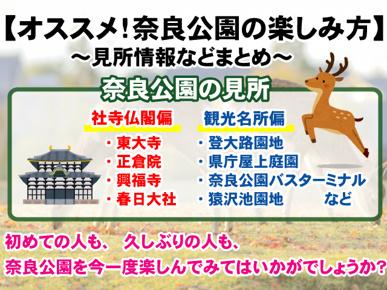 【オススメ!奈良公園の見所&楽しみ方】イベント情報などまとめの画像