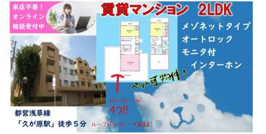 ペット可★メゾネットタイプ2LDK★ルーフバルコニー付!の画像