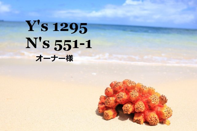 N's551-1 オーナー様の画像