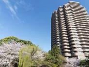 東京都品川区北品川近辺の画像