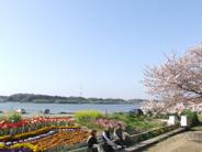 静岡県浜松市西区入野町近辺の画像