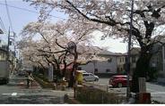 東京都大田区南馬込近辺の画像