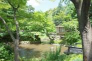 東京都練馬区向山近辺の画像
