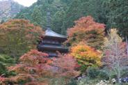 兵庫県丹波市近辺の画像