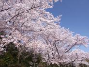 東京都豊島区近辺の画像