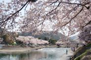 京都府宇治市近辺の画像