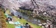 東京都調布市近辺の画像