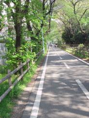 東京都小平市近辺の画像