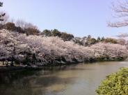 愛知県名古屋市北区近辺の画像