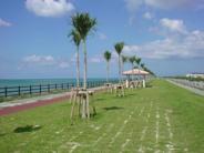 沖縄県豊見城市近辺の画像