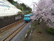 和歌山県有田市近辺の画像