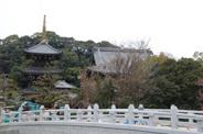 大阪府貝塚市近辺の画像