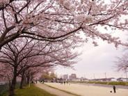 兵庫県神戸市西区近辺の画像