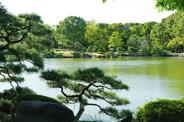 東京都江東区近辺の画像