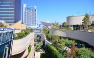 大阪府大阪市浪速区近辺の画像
