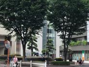 東京都板橋区近辺の画像