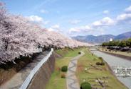 神奈川県秦野市近辺の画像