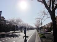 千葉県千葉市緑区あすみが丘近辺の画像