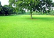 千葉県千葉市緑区あすみが丘東近辺の画像