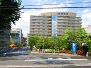 東京都港区白金近辺の画像