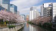 東京都品川区西五反田近辺の画像