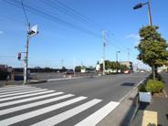 新井宿近辺の画像