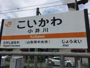 小井川近辺の画像
