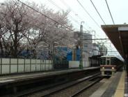 代田橋近辺の画像