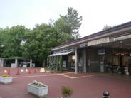 井の頭公園近辺の画像