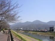 中野東近辺の画像