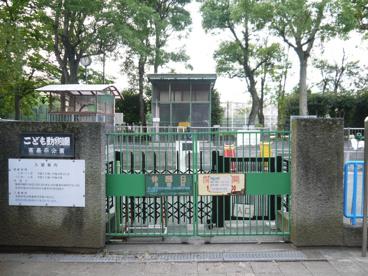 板橋区立 徳丸ヶ原公園(こども動物園)の画像3