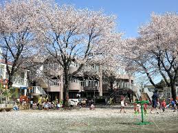村山中藤保育園「櫻」の画像1