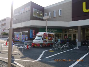 いなげや 板橋小豆沢店の画像5