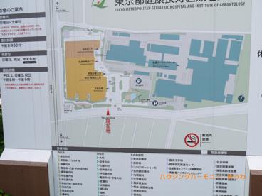 東京都健康長寿医療センターの画像2