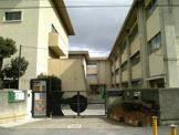 八尾市立桂小学校