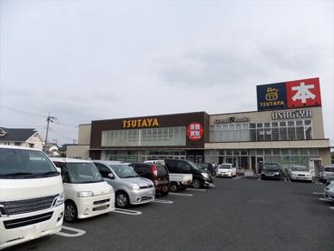 TSUTAYA 宇都宮東簗瀬店の画像2