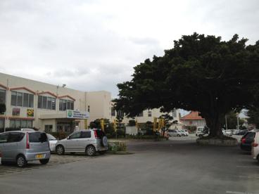 八重瀬町役場の画像1