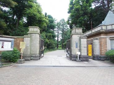 駒場公園の画像1