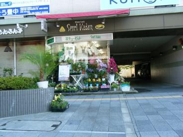 千里花壇(花キューピット)の画像1