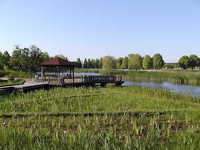 舎人公園の画像