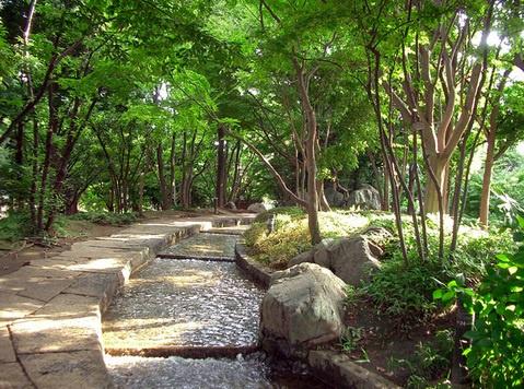 滝野川公園の画像