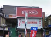 BIGECHO