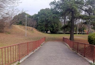 樫の木公園の画像1