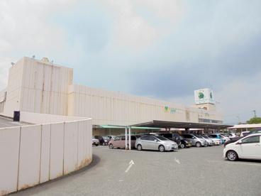 ハート神辺駅前店の画像2