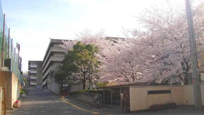 吹田市立佐井寺中学校の画像1