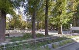 靭公園(東園)