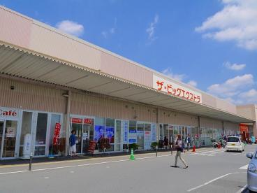 ザ・ビッグエクストラ 大安寺店の画像3