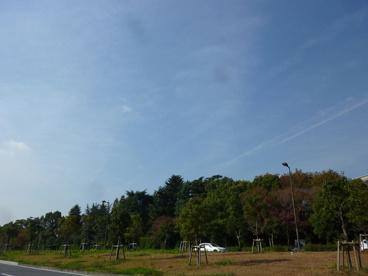 花博記念公園鶴見緑地の画像1